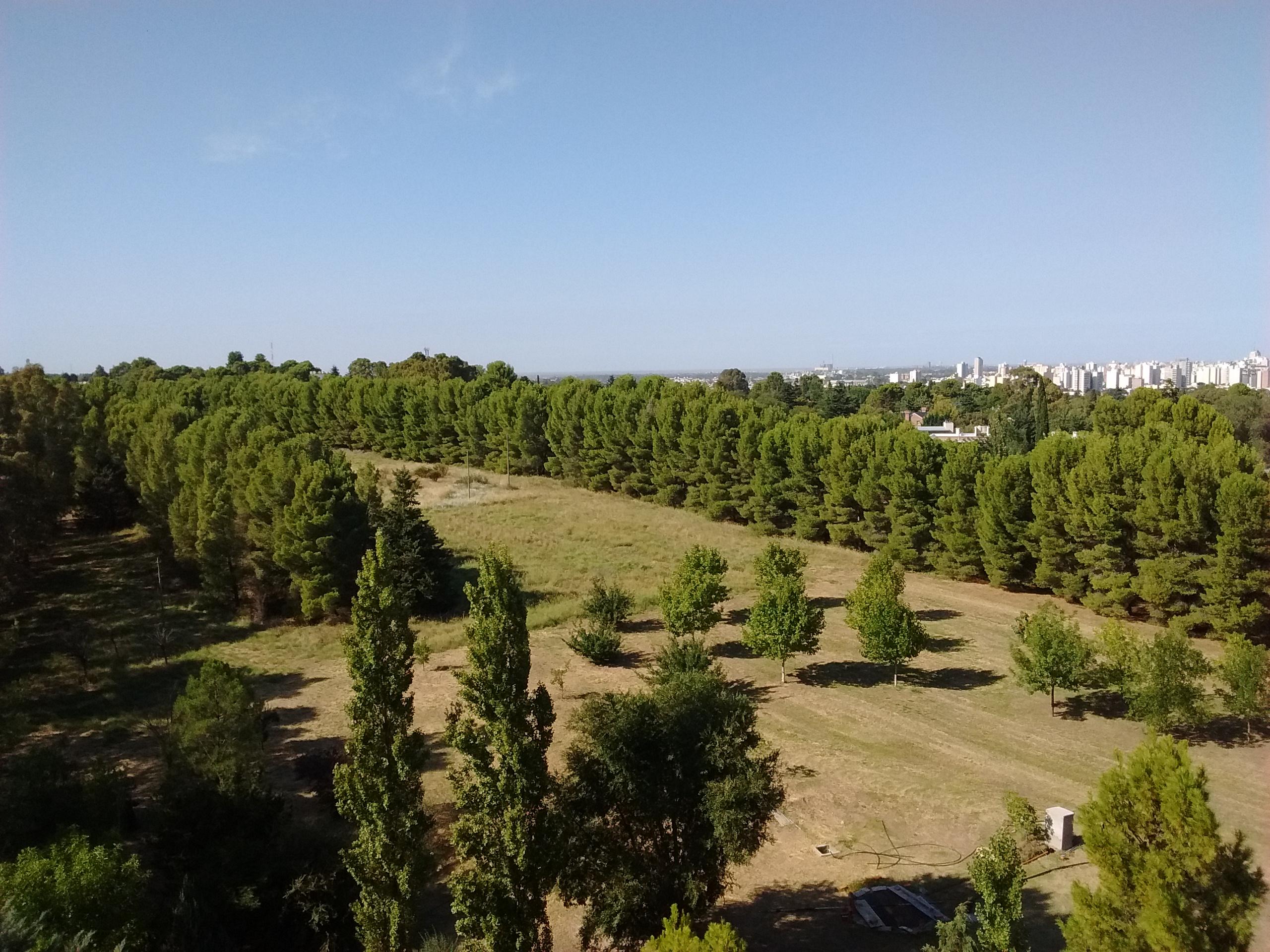 Vista desde la terraza del Depto. de Agronomía
