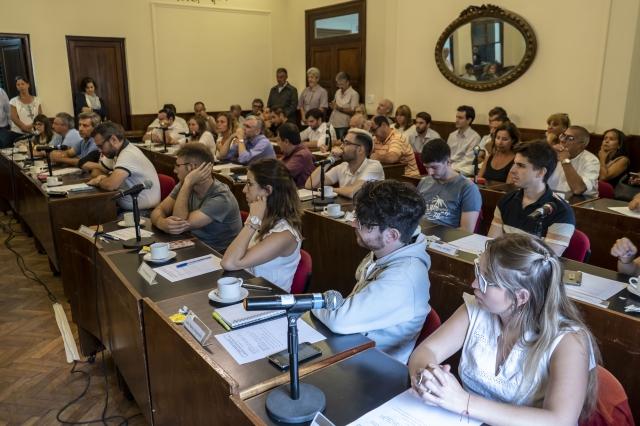 Primer plenario del CSU 2020