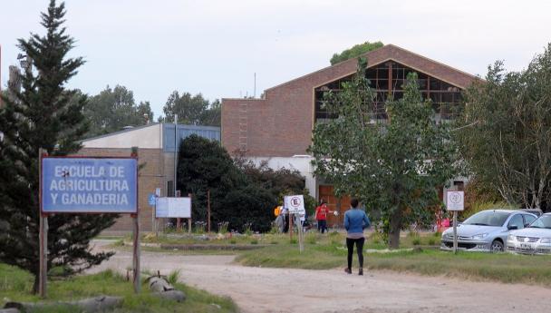 Imagen Noticia: Ingreso 2022 a la Escuela de Agricultura y Ganadería